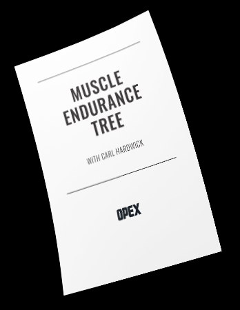 Muscle Endurance Course Notes