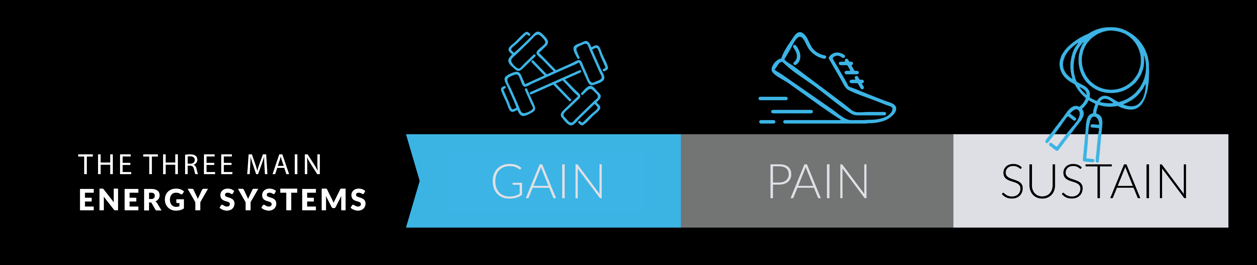 The 3 main energy systems - pain gain sustain