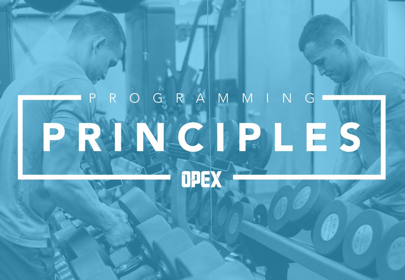 Programming: Principles Digital Course