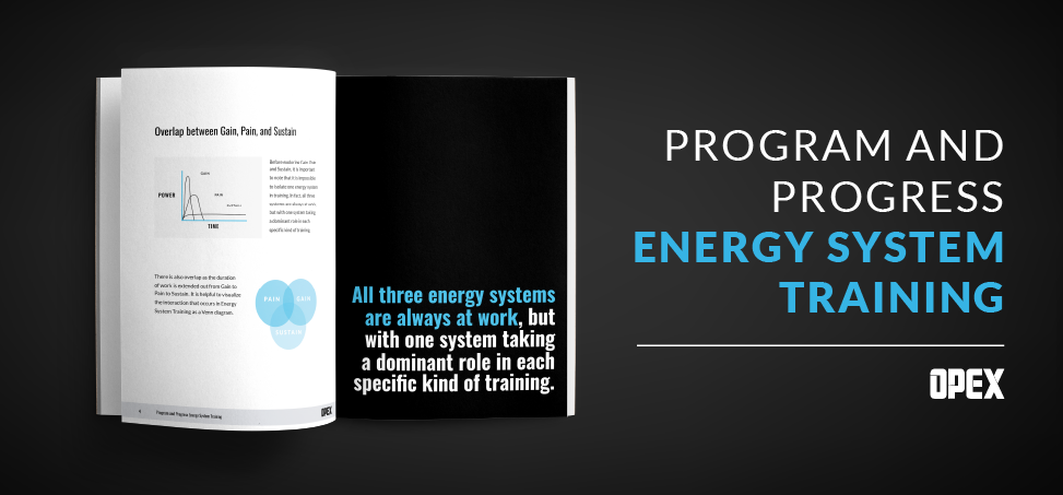 Energy System Training Guide