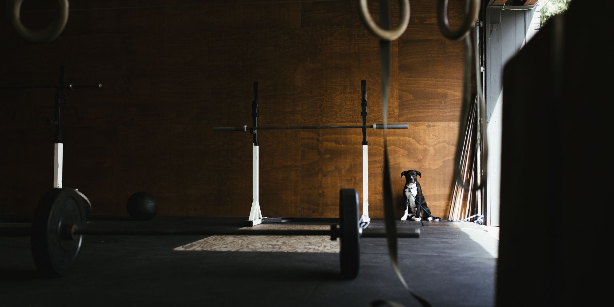 Essential Home Fitness Equipment & How to Use IT