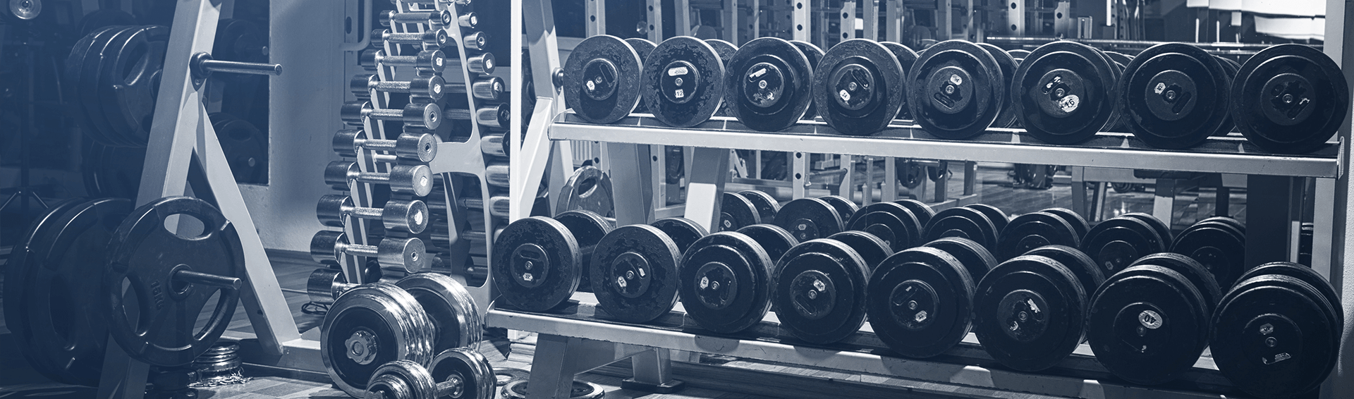 What Education Do You Need to Be a Personal Trainer?