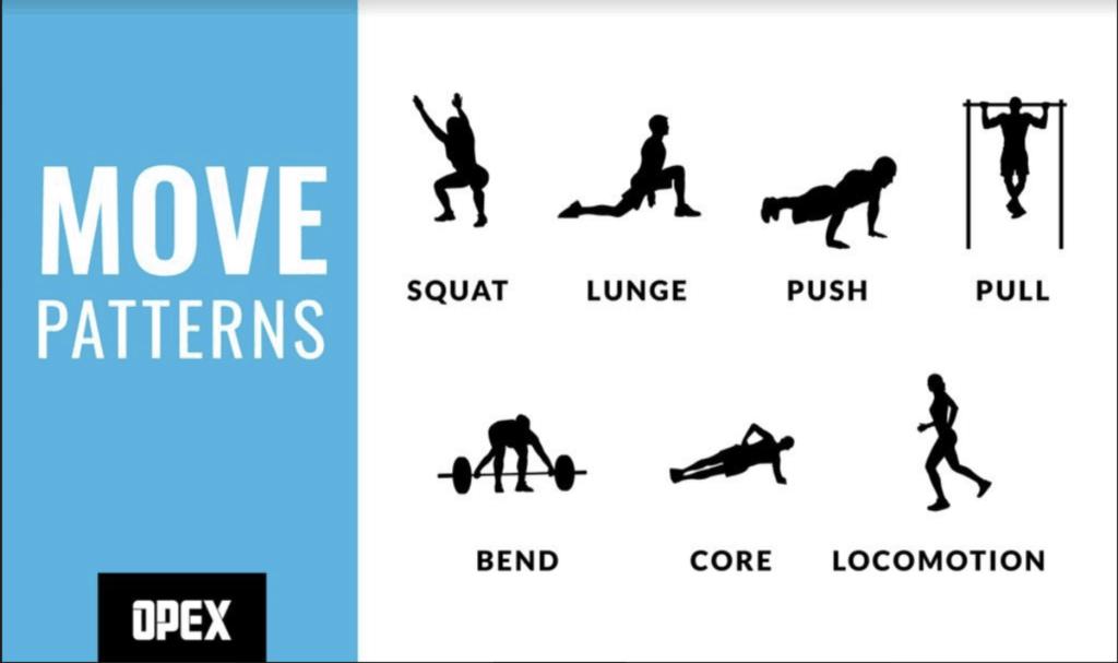 The six fundamental movement patterns.