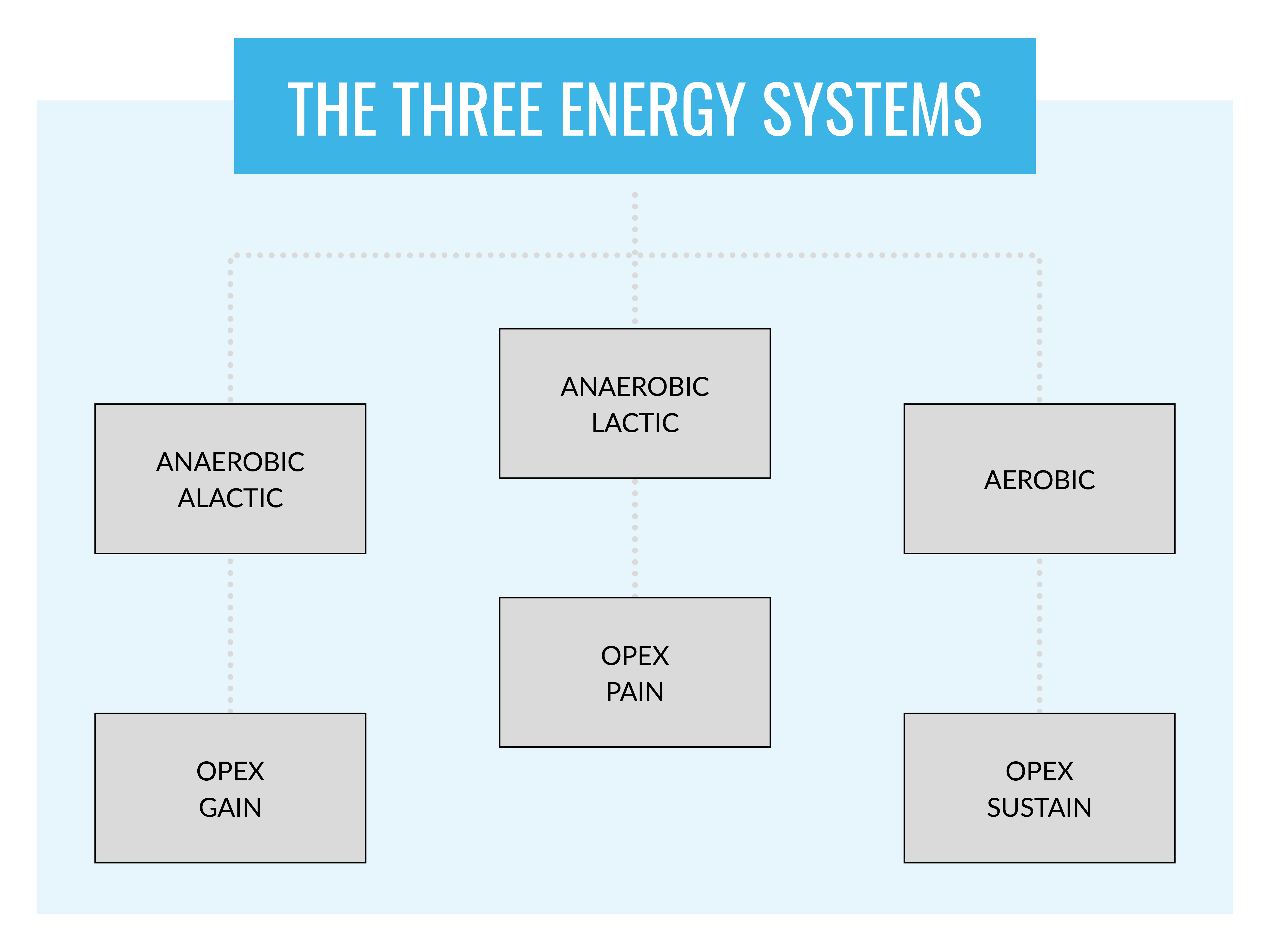 Three Energy Systems infographic