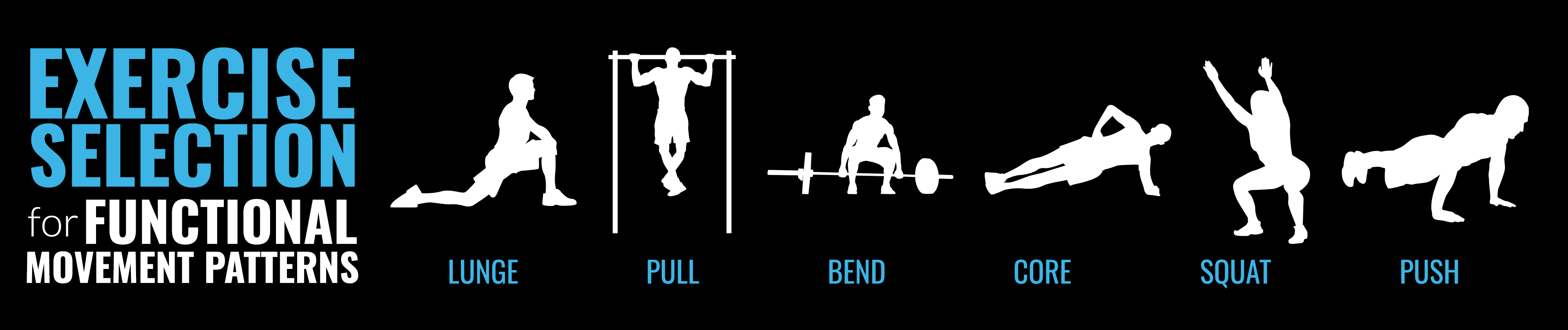 Exercise Selection Movement Patterns